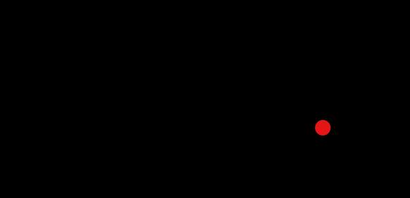 Logo Team Gästeführungen Rottweil